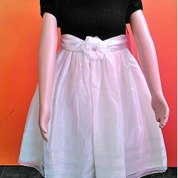 Cinderella Velour Flock dress- 6-9mths