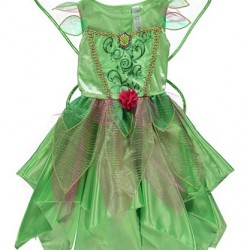 Disney Fairies Tinkerbell Fancy Dress Costume with wings (2-4yrs)