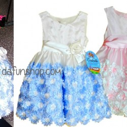 Cinderella Toddler Girls Petals Occassion dress (2-4yrs)
