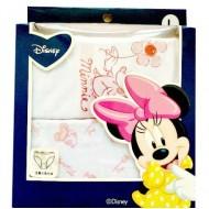 Disney Minnie 2 pack briefs- 3-4, 6-8yrs