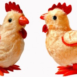 Wind up Chick -Mini Toy