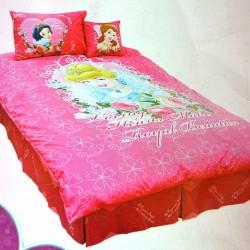 Disney Princess Special 4pc Twin Comforter