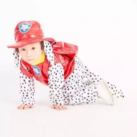 Paw Patrol Marshall Kids Costume -4-6yrs